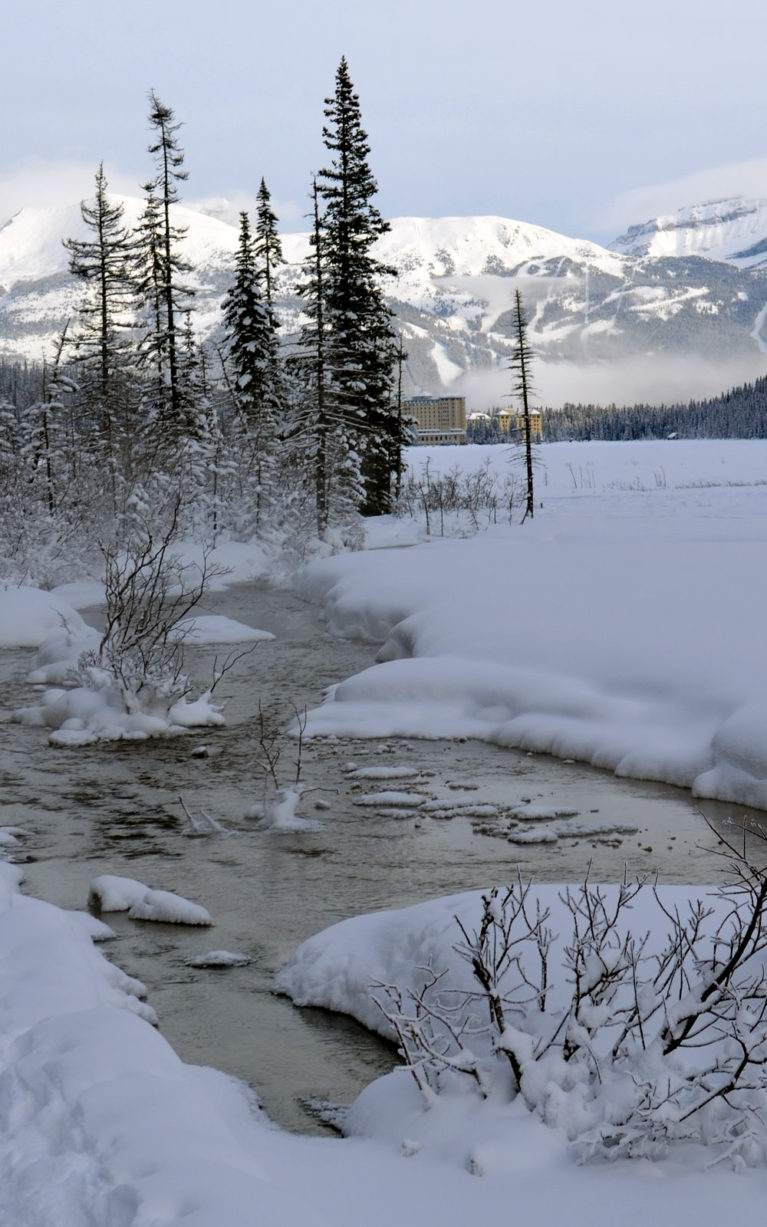Where to Go in Alberta? Lake Louise! :: I've Been Bit! A Travel Blog