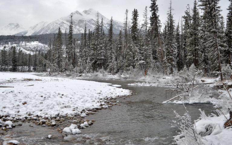 What to Do in Alberta? Visit Maligne Canyon! :: I've Been Bit! A Travel Blog