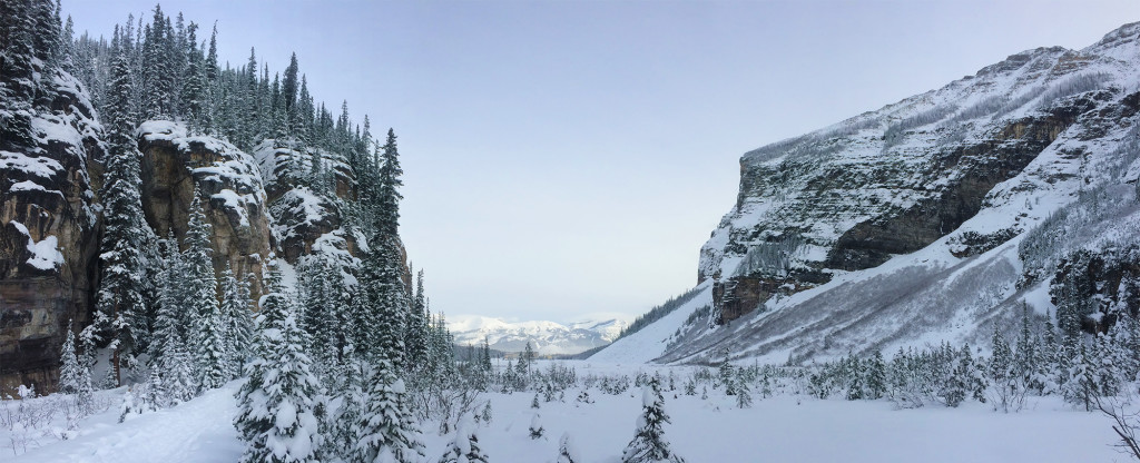 Views of Lake Louise :: I've Been Bit! A Travel Blog