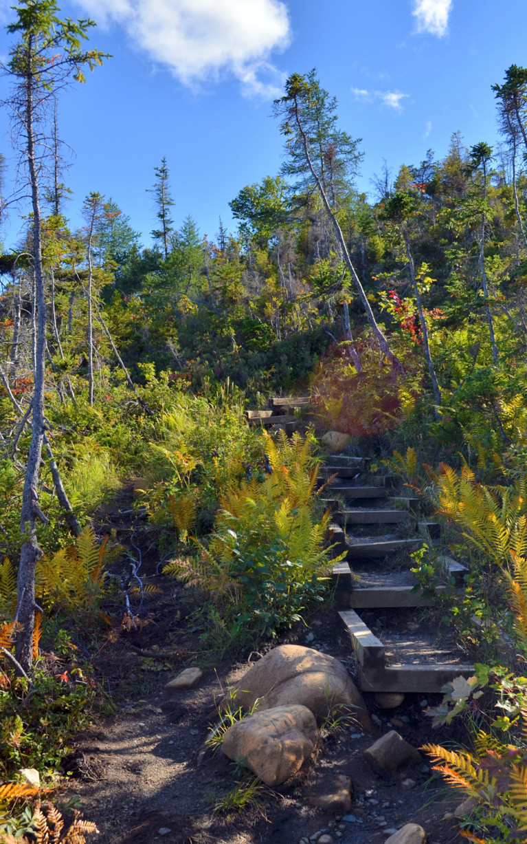 Towards the Top of the Lookout Trail :: I've Been Bit! A Travel Blog