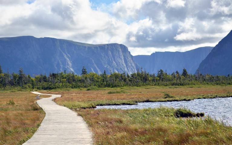 Along the Boardwalk of Western Brook Pond :: I've Been Bit! A Travel Blog
