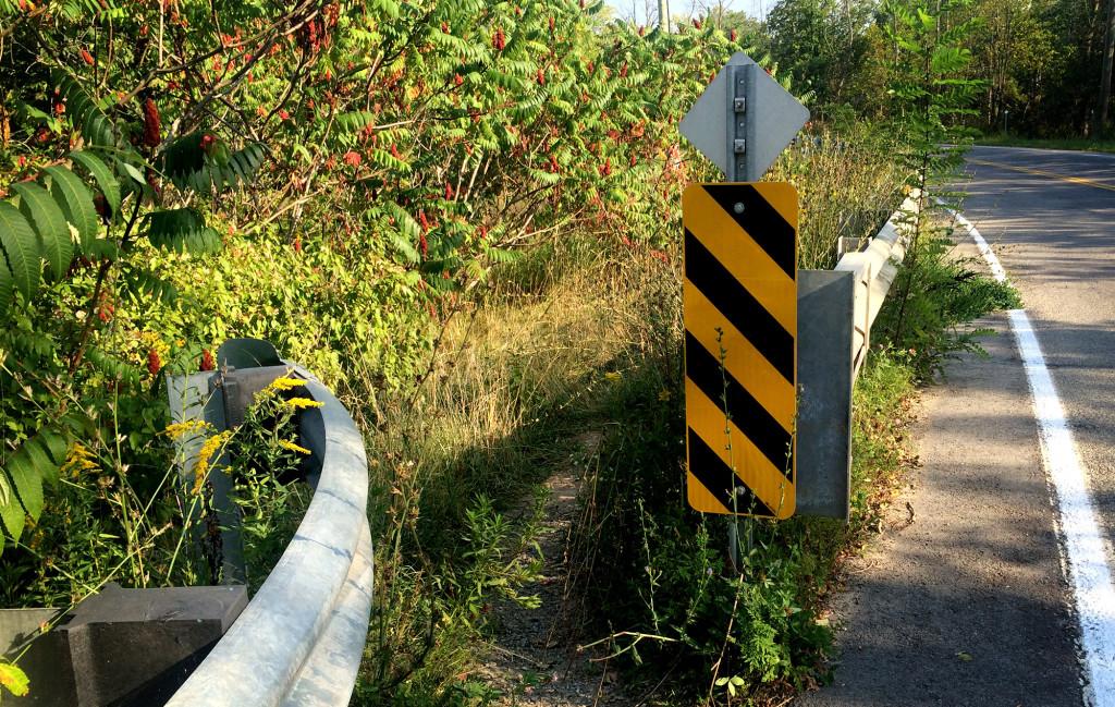 The Path Towards Upper Beamer Falls :: I've Been Bit! A Travel Blog
