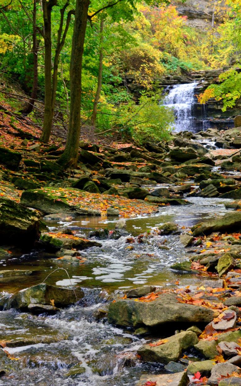 Creeping up on Lower Beamer Falls :: I've Been Bit! A Travel Blog