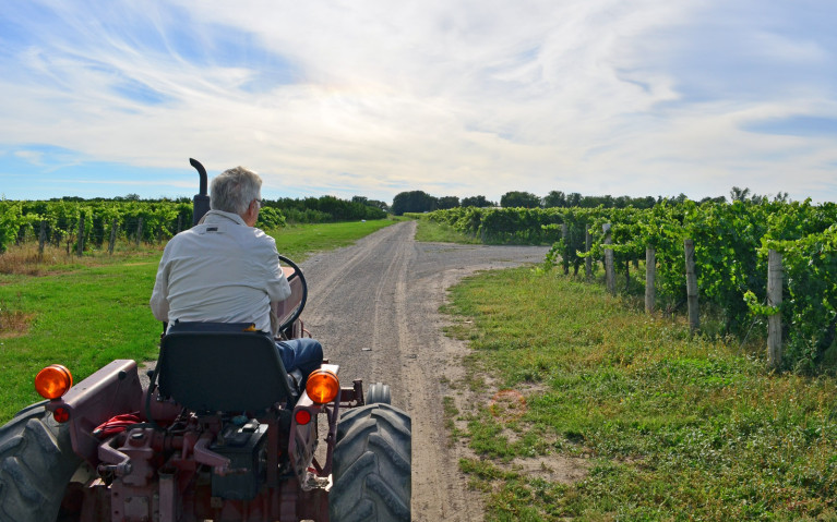 Small Wagon but Big Heart at Small Talk Vineyards :: I've Been Bit! A Travel Blog