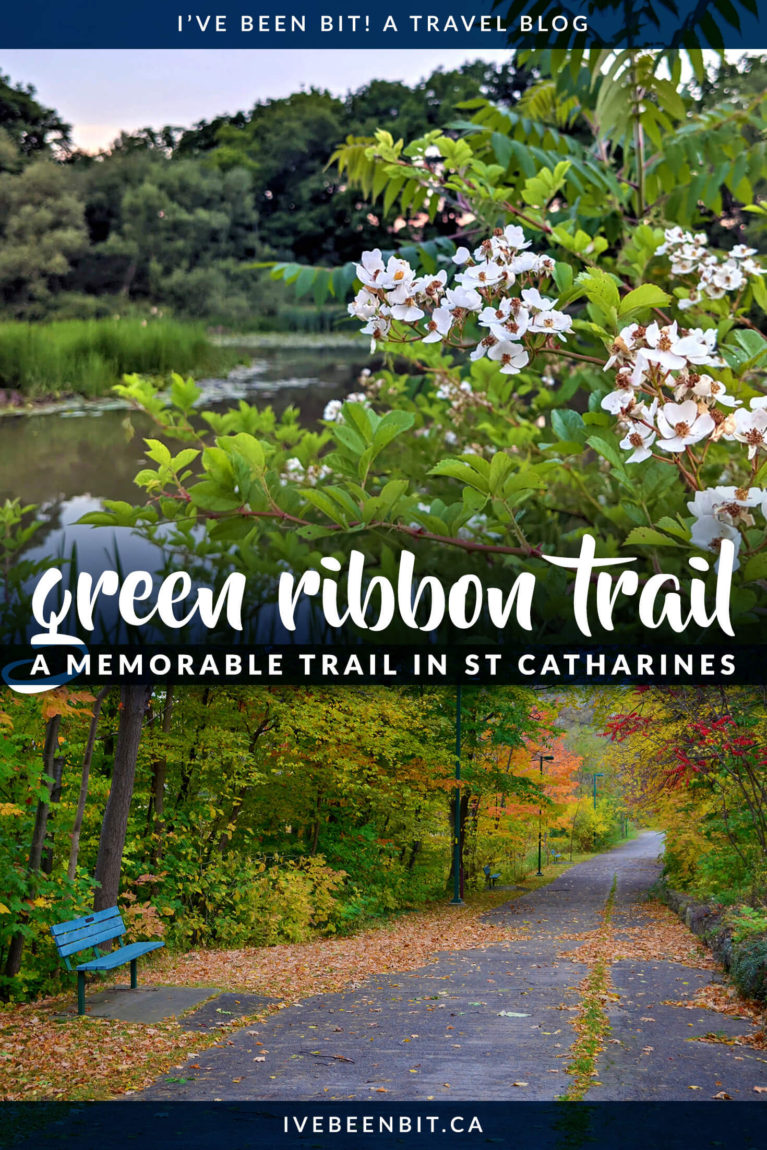 A little spot in St Catharines that you might miss if you blink, but the perfect dose of nature. Take some time to reflect and enjoy this St Catharines hiking trail - the Green Ribbon Trail. This is a Niagara hiking trail you should visit! | IveBeenBit.ca | #Travel #Canada #Ontario #Hiking | Hiking in the Niagara Region. St Catharines hikes. Niagara Hiking. Niagara Walking.