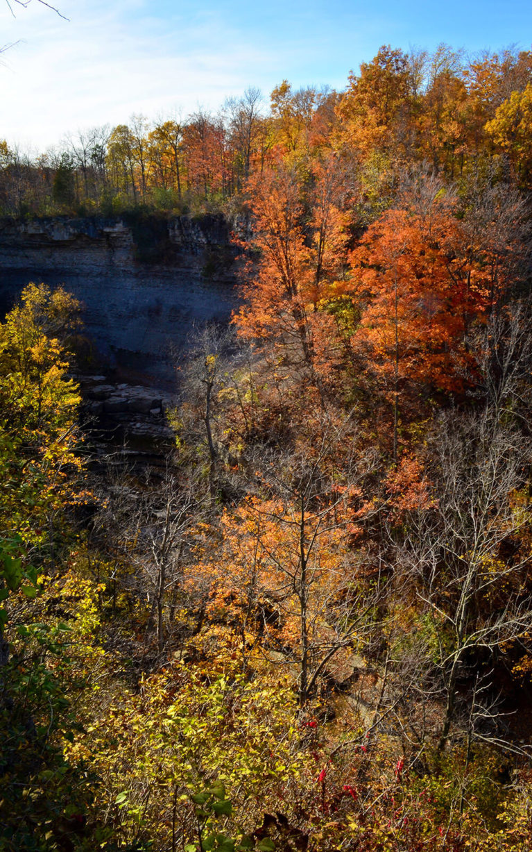 Top of the Gorge Near Rockway Falls :: I've Been Bit! A Travel Blog