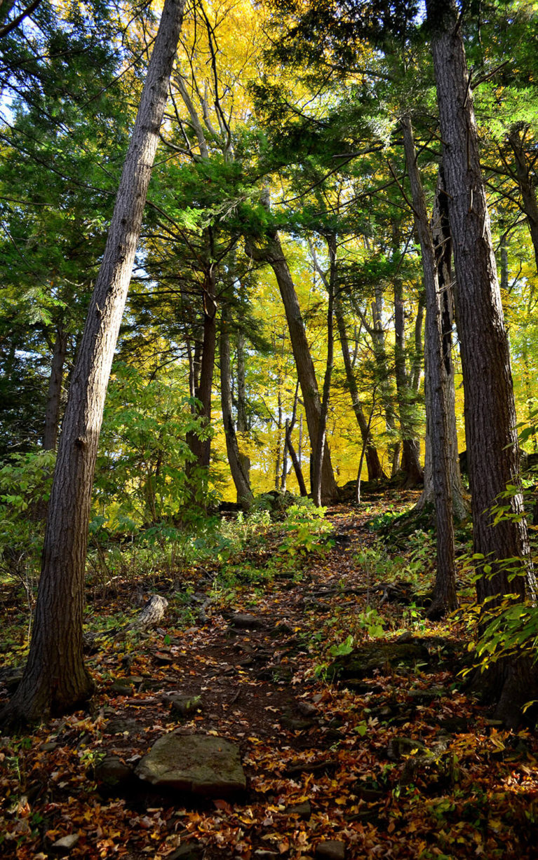 Down the Niagara Escarpment :: I've Been Bit! A Travel Blog