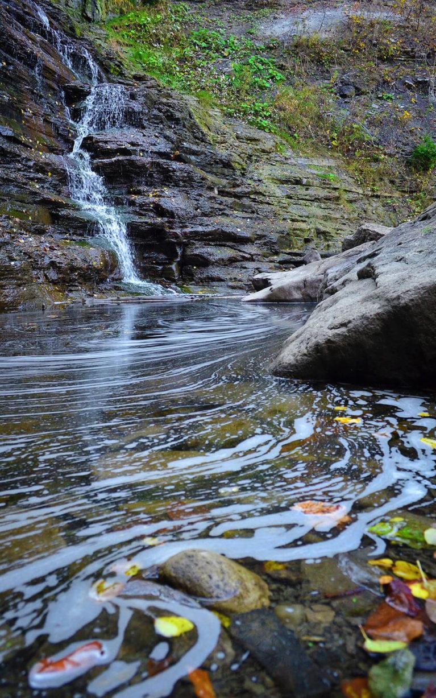 Close Up of the Rockway Falls Basin :: I've Been Bit! A Travel Blog