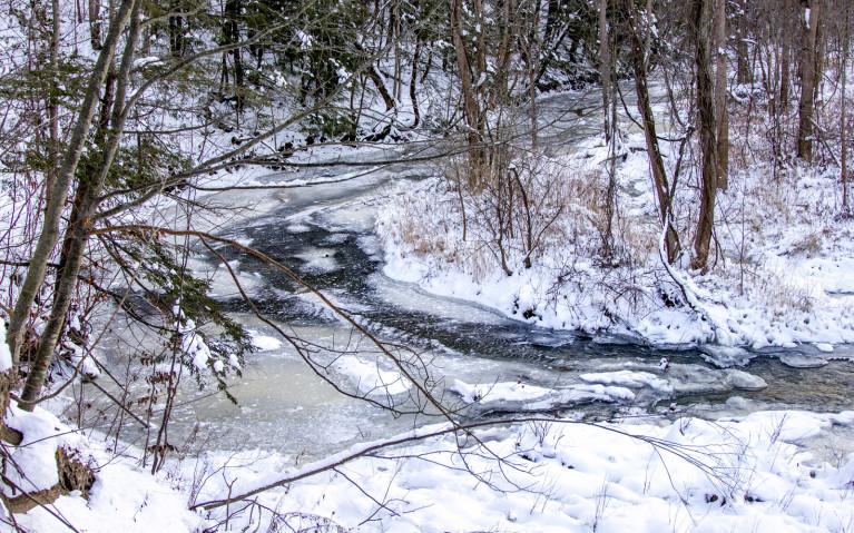 Fifteen Mile Creek in Winter :: I've Been Bit! A Travel Blog
