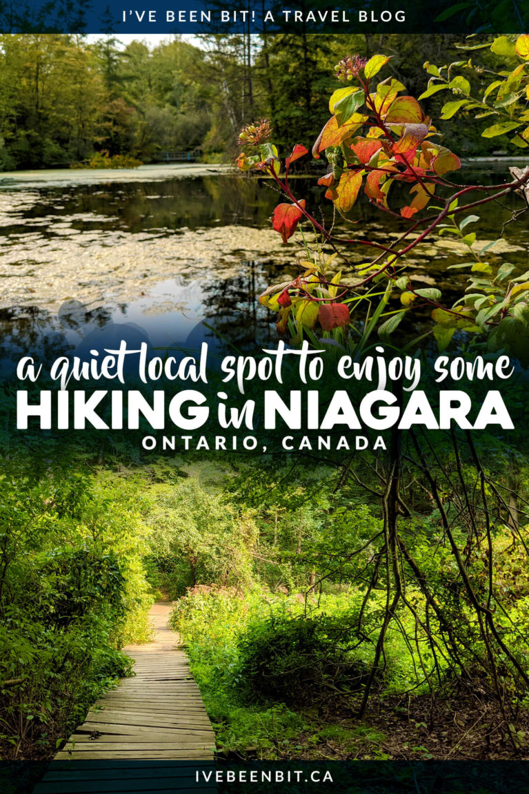 Looking for some hiking trails with no crowds? You won't want to miss the Saint Johns Conservation Area in Fonthill! | Niagara Hiking | Niagara Falls Hiking | Hiking Near Niagara Falls Canada | Niagara Falls Canada Hiking | Hiking Trails Niagara | Ontario Hiking Trails | Hiking Ontario | Hiking Trails in Ontario | Hiking Trails Southern Ontario | #Ontario #Hiking | IveBeenBit.ca