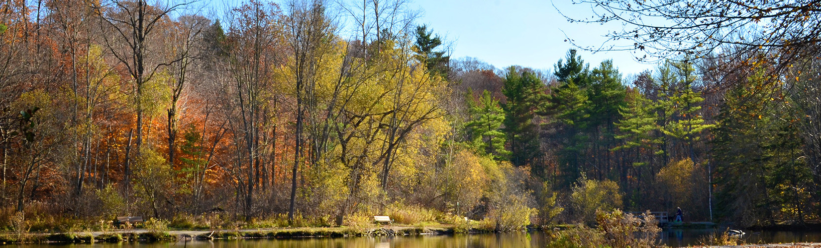 St Johns Conservation Area: A Quaint Natural Spot in Font Hill :: I've Been Bit! Travel Blog