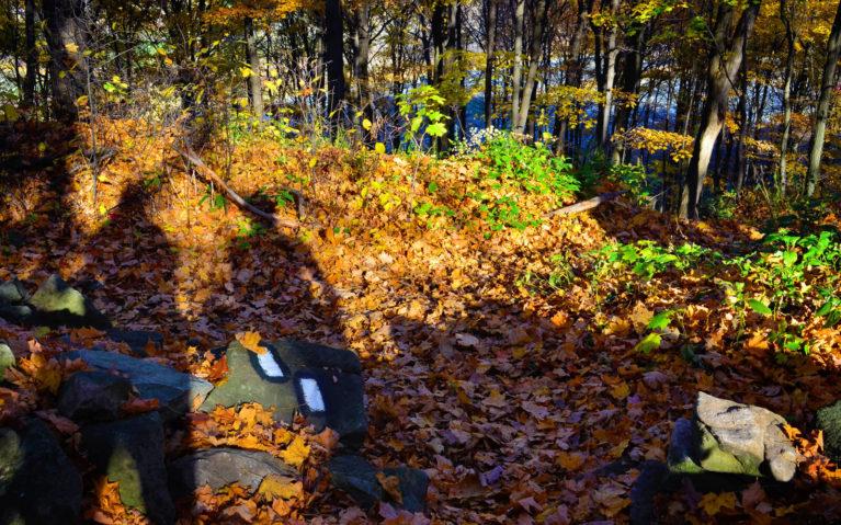 Blazes On Rocks Near the Ground of the Bruce Trail :: I've Been Bit! Travel Blog