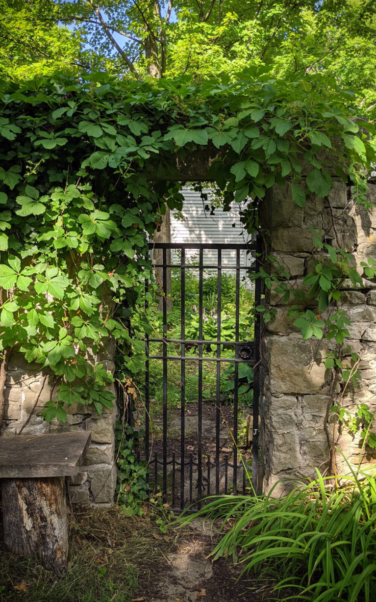 Cast Iron Gate at the Education Centre in Woodend Conservation Area :: I've Been Bit! Travel Blog