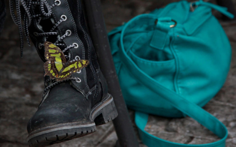 Black and Yellow Butterfly on a Black Boot with a Teal Purse in the Background :: I've Been Bit! Travel Blog