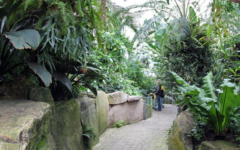 Inside the Niagara Falls Butterfly Conservatory :: I've Been Bit! Travel Blog