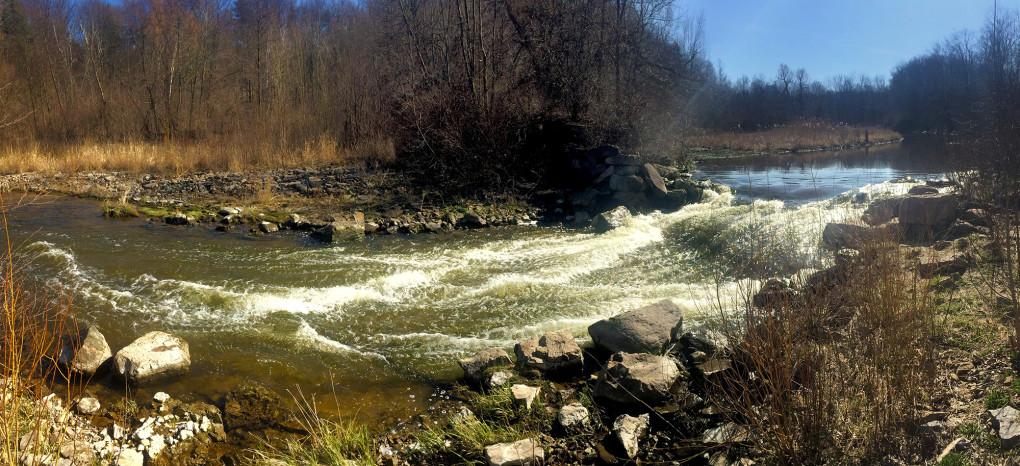 I've Been Bit! A Travel Blog :: Hiking Hamilton Crooks Hollow