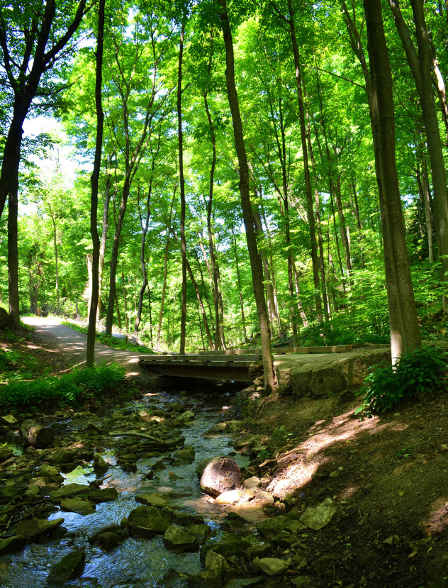 I've Been Bit! A Travel Blog :: Hiking Hamilton Sulphur Line Rail Trail