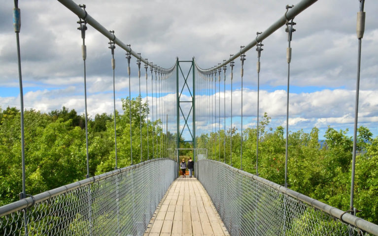 View of the Suspension Bridge at Scenic Caves near Collingwood :: I've Been Bit! Travel Blog