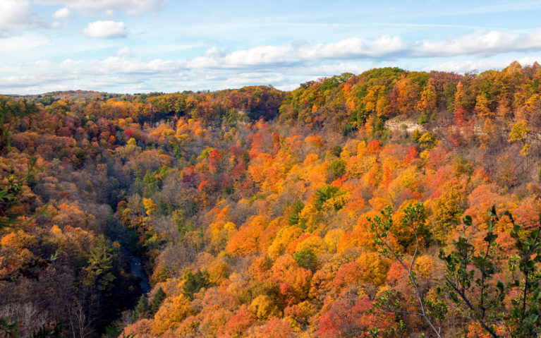 Dundas Peak in the Fall Season :: I've Been Bit! Travel Blog