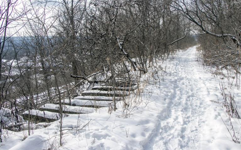 Along the Tews Falls Side Trail Towards Dundas Peak Ontario :: I've Been Bit! A Travel Blog