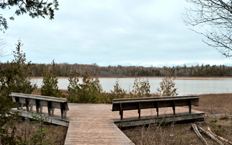 Benches at Overlook at Horse Lake in Bruce Peninsula National Park :: I've Been Bit! Travel Blog