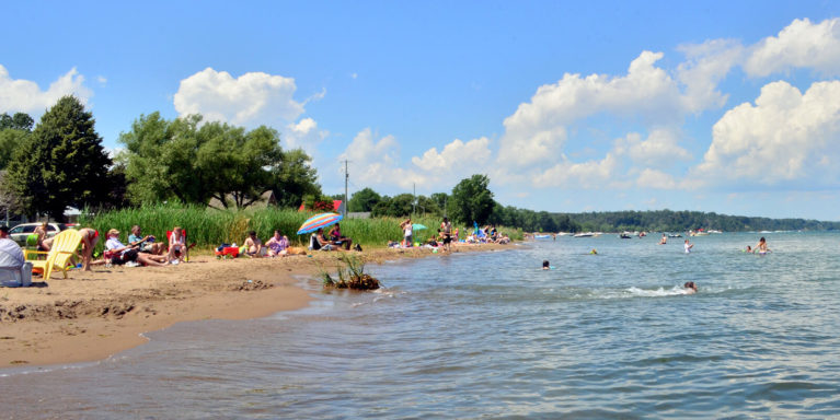 People Enjoying a Sunny Day on the Shores of Turkey Point Beach :: I've Been Bit! Travel Blog