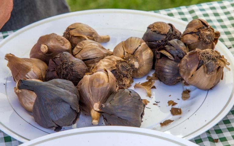 Bulbs of Black Garlic at the Perth Garlic Festival :: I've Been Bit! Travel Blog