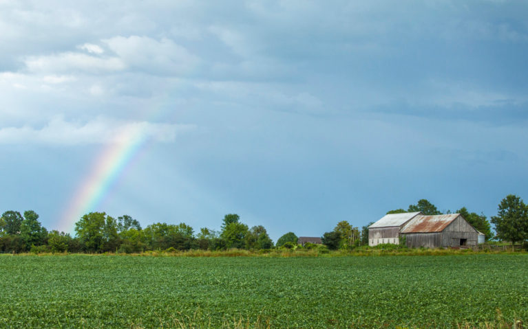 Rainbow Over a Field in Lanark County Ontario's Highlands :: I've Been Bit! Travel Blog