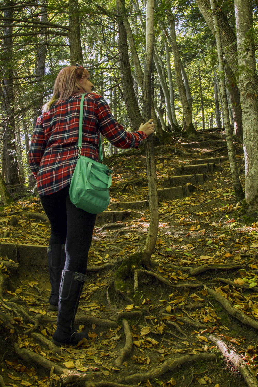 I've Been Bit! A Travel Blog :: Grey County Autumn Adventures Indian Falls Hiking