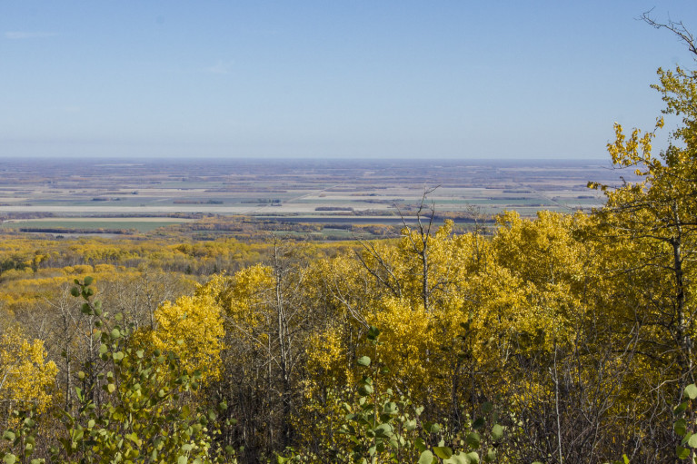 View from Lookout in Riding Mountain National Park - 20+ Photos Guaranteed to Inspire a Manitoba Road Trip :: I've Been Bit! A Travel Blog