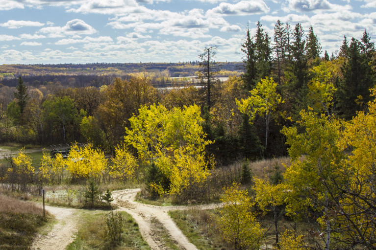 Spirit Sands - 20+ Photos Guaranteed to Inspire a Manitoba Road Trip :: I've Been Bit! A Travel Blog