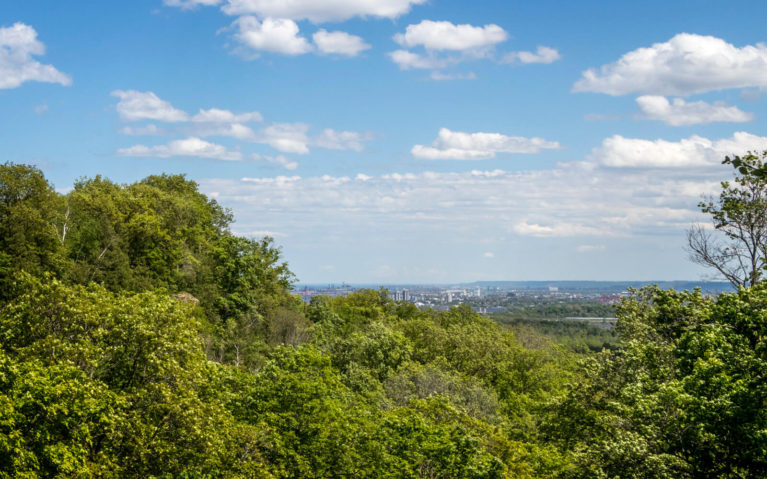 Views of Hamilton from One of the Lookouts Along the Borer's Falls Trail :: I've Been Bit! Travel Blog