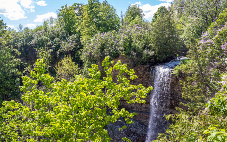 Borer's Falls in Summer From the Lookout :: I've Been Bit! Travel Blog