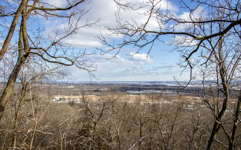 Overlooking Hamilton - Hiking Hamilton's Borer's Falls :: I've Been Bit! A Travel Blog