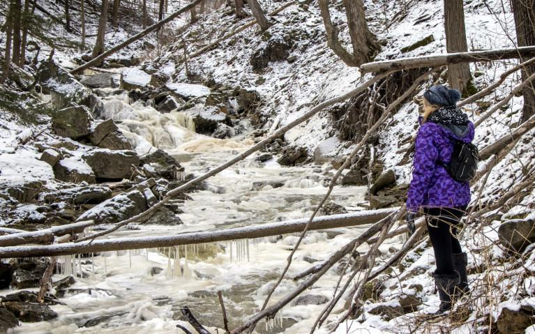 Walking along Borer's Creek - Hiking Hamilton's Borer's Falls :: I've Been Bit! A Travel Blog