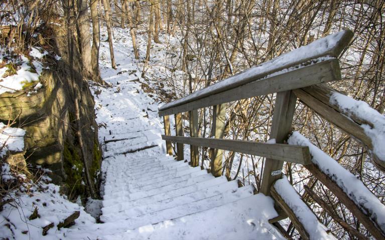 Staircase Down the Niagara Escarpment - Hiking Hamilton's Borer's Falls :: I've Been Bit! A Travel Blog