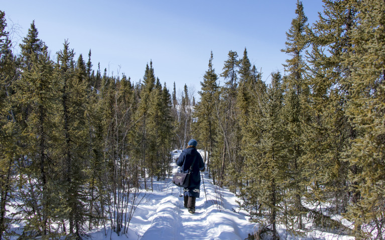 Experience Yellowknife by Strong Interpretations :: I've Been Bit! A Travel Blog