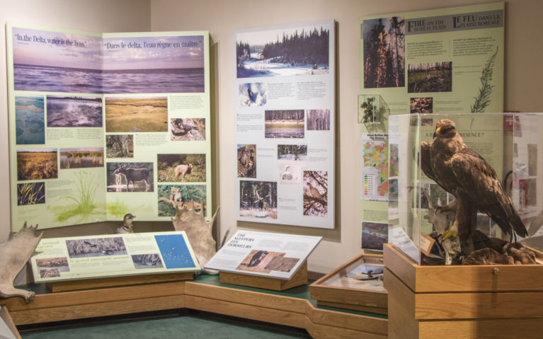 Inside the Wood Buffalo National Park Visitors Centre :: I've Been Bit! A Travel Blog