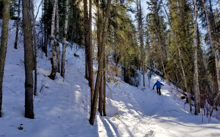 Winter Adds a Level of Toughness to Any Fort Smith Hike! :: I've Been Bit! A Travel Blog