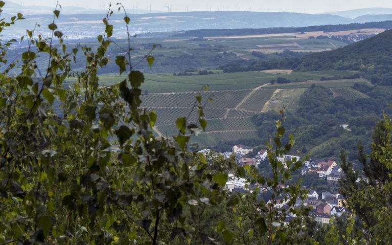 Hunsrück Blick Lookout :: I've Been Bit! A Travel Blog