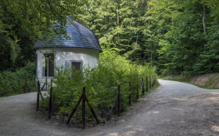 The Magician's Home :: I've Been Bit! A Travel Blog