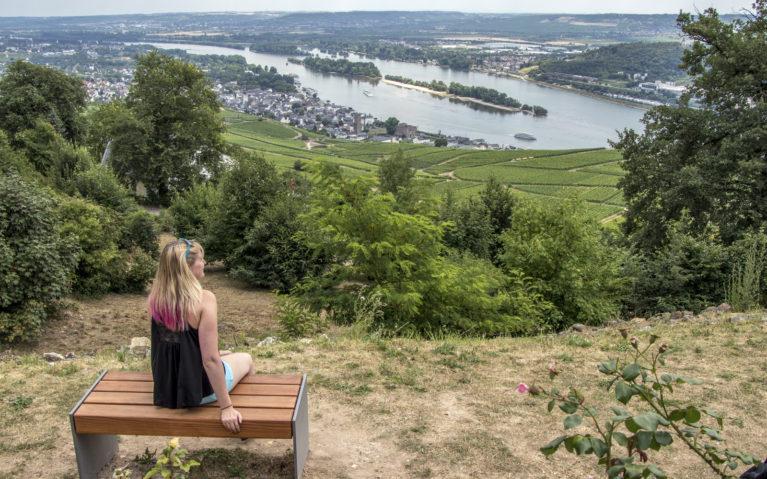 Views Along the Rhine River :: I've Been Bit! A Travel Blog