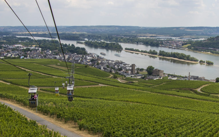 View from the Rüdesheim Cable Car :: I've Been Bit! A Travel Blog