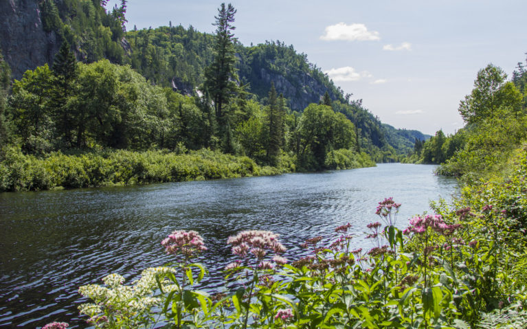 Agawa River Views from the River Trail :: I've Been Bit! A Travel Blog