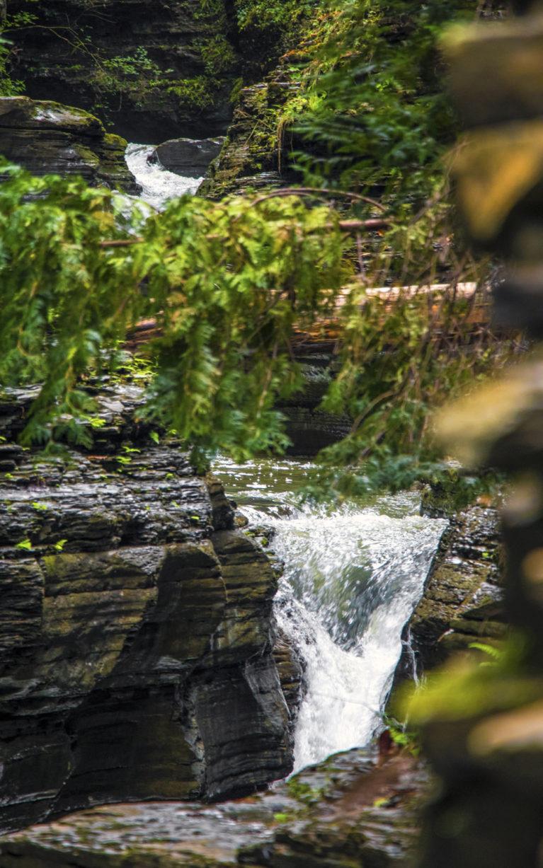 A Beautiful Day Trip to Watkins Glen :: I've Been Bit! A Travel Blog