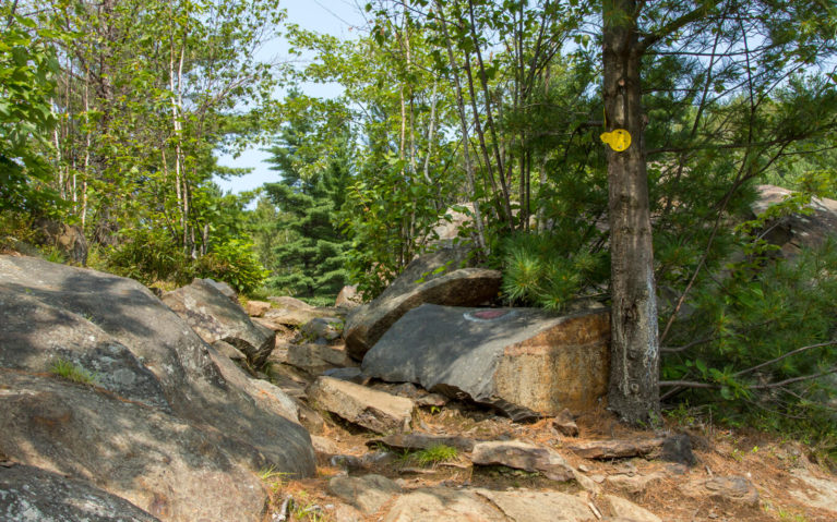 Watch for the Markers Along the Onaping Falls Trail :: I've Been Bit! A Travel Blog