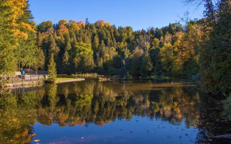 Belfountain Conservation Area is a Perfect Autumn Destination :: I've Been Bit! A Travel Blog
