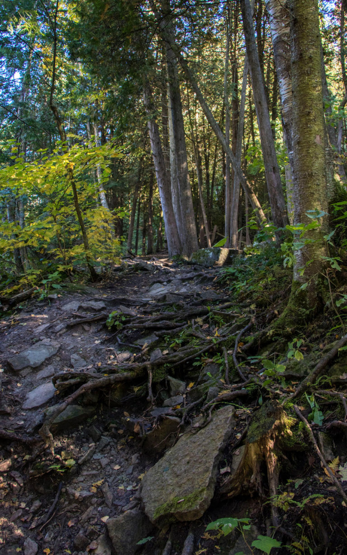Hiking in Belfountain Ontario :: I've Been Bit! A Travel Blog