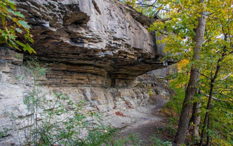 The Mesmerizing Limestone Cliffs in the Niagara Glen Nature Reserve :: I've Been Bit! A Travel Blog
