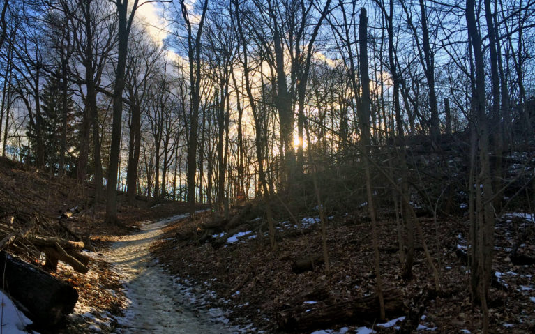 Hiking Trails in Kitchener Waterloo, Ontario :: I've Been Bit! A Travel Blog